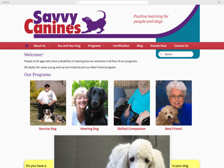 Savvy Canines website